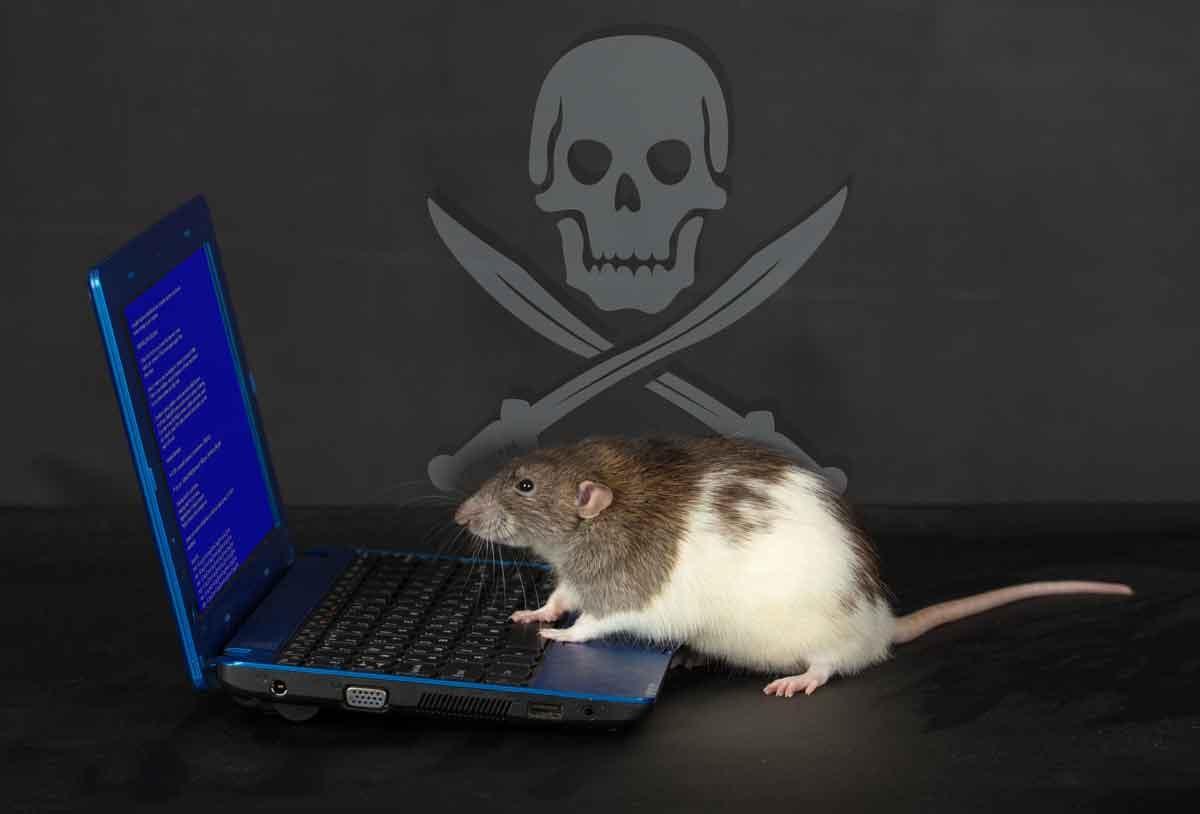 RAT_problem