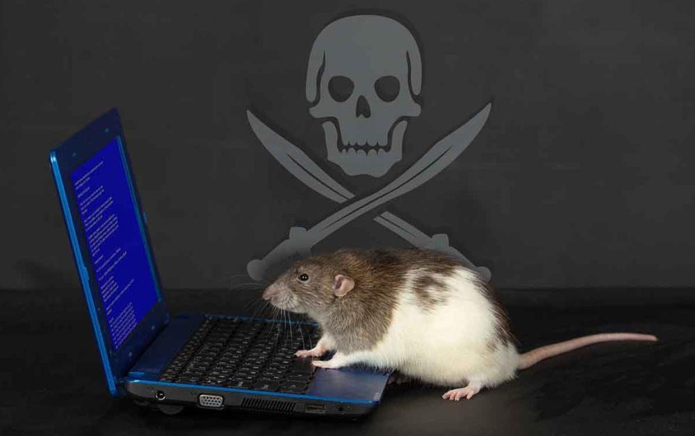 RAT Social Image